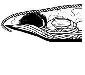 Рецепты шефов: Спагетти «Фрутти ди Маре». Изображение № 3.