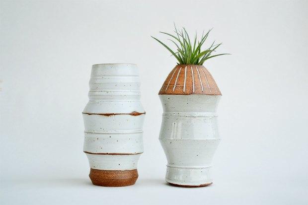 Где покупать комнатные растения икашпо. Изображение № 5.