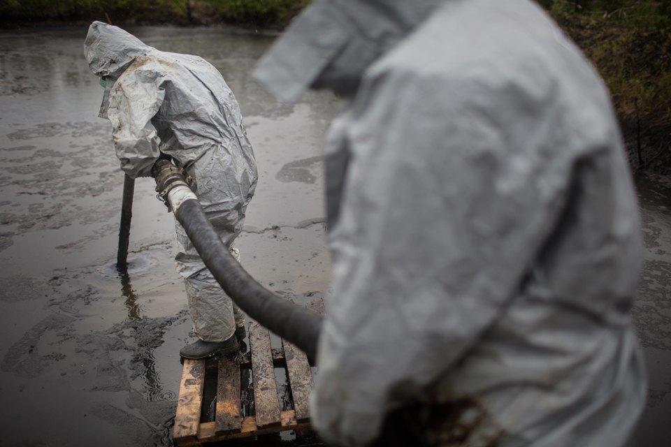 Как леса Коми очищают от нефти. Изображение № 39.