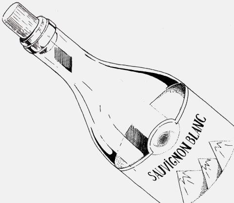 Всё о 9 сортах вина: вкус, аромат, происхождение и особенности. Изображение № 2.