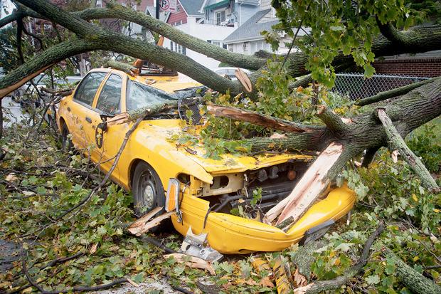 Иностранный опыт: Как Нью-Йорксправляется сураганом. Изображение № 20.