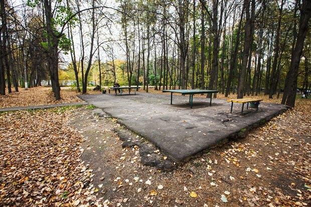 Чего хочет Москва: Четыре районных парка. Изображение № 23.