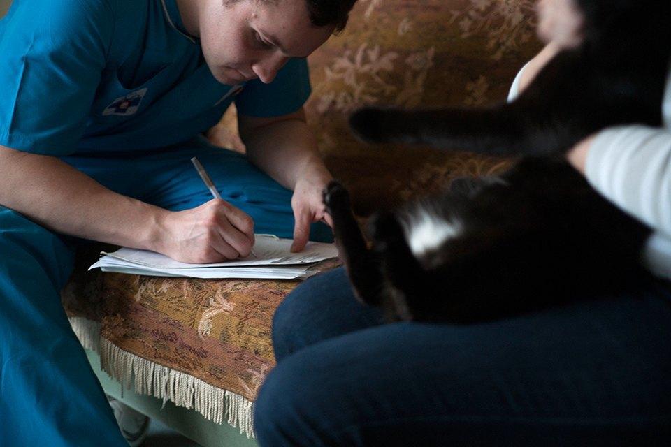 Всё не как улюдей: Какработает ветеринарная неотложка. Изображение № 9.