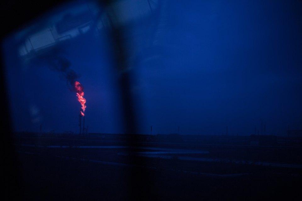 Как леса Коми очищают от нефти. Изображение № 47.