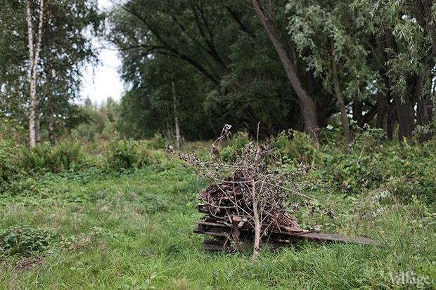 Дом на дереве: Жители Лахты за месяц до строительства небоскреба. Изображение № 11.