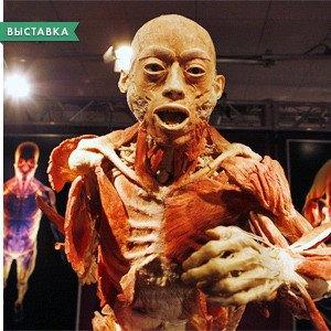 Страх и ужас: Хеллоуин в Киеве. Изображение № 3.