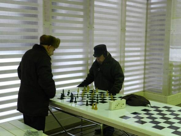 В Нескучном саду открылся шахматный клуб «Белая ладья». Изображение № 7.