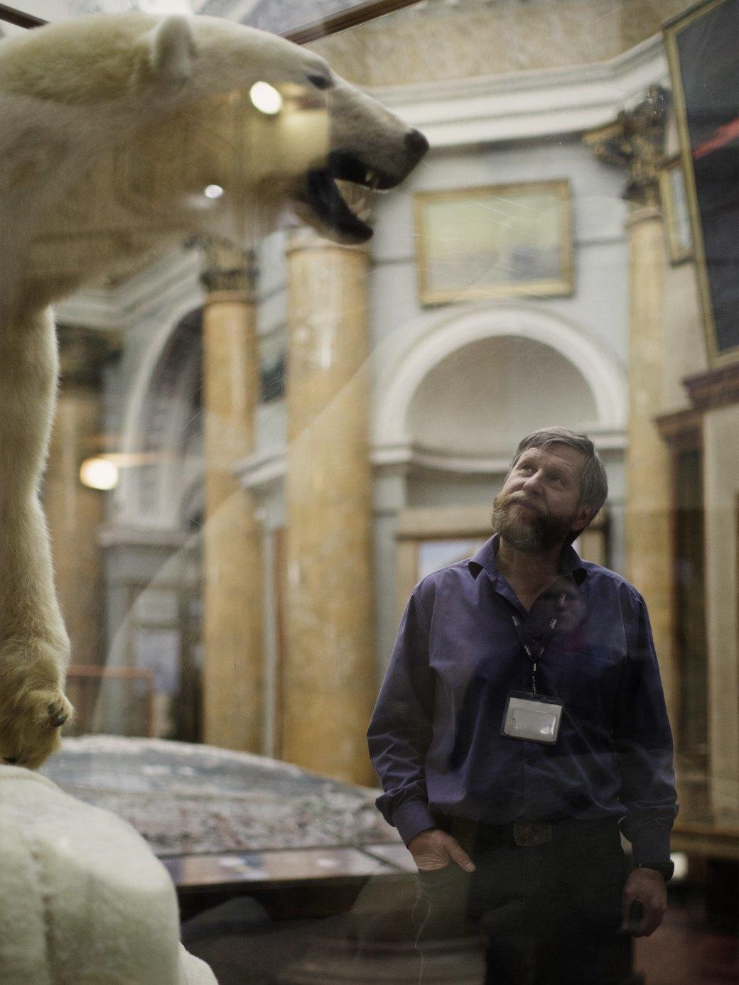 «Переезд невозможен»: Бывший директор музея Арктики иАнтарктики— оРПЦ ибелых медведях. Изображение № 2.