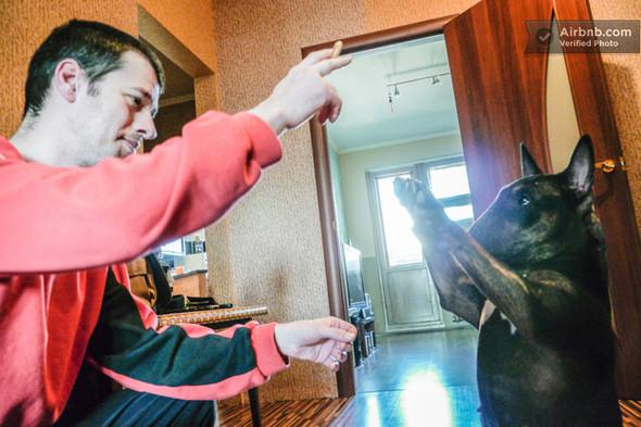В Киеве появился международный сервис посуточной аренды жилья Airbnb. Зображення № 12.