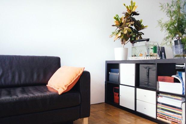 Эксперимент The Village: Сколько одинаковых вещей в современных квартирах. Изображение № 11.