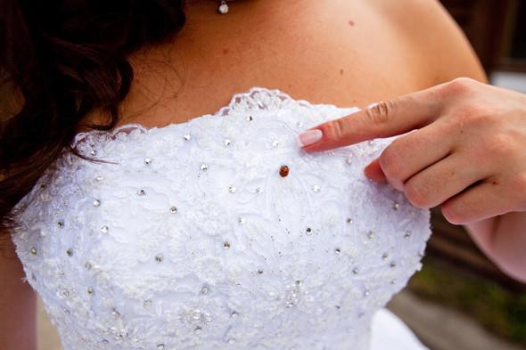 Сезонное предложение: 4 современные свадьбы. Изображение № 13.