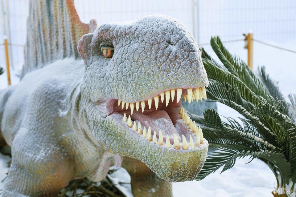 Фоторепортаж: Парк динозавров на ВВЦ. Изображение № 5.