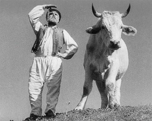 Кадр из фильма А. Довженко «Земля». Изображение №4.