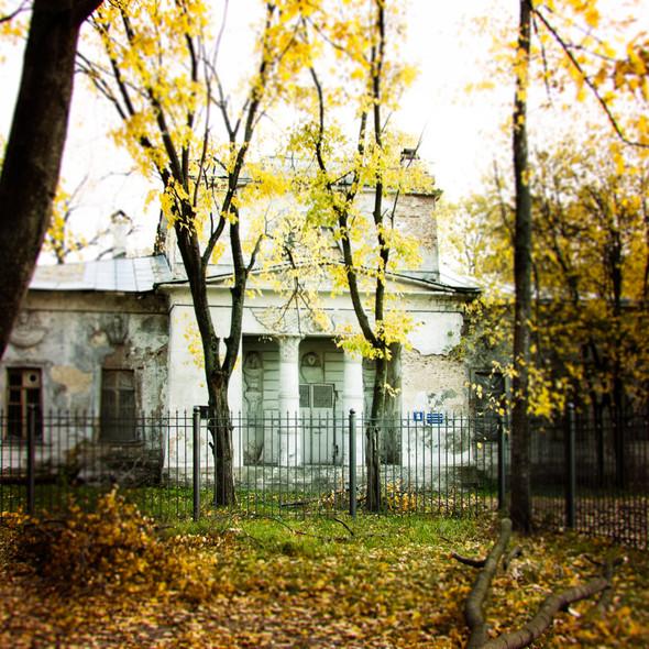 В зоне риска: Египетский павильон и Померанцева оранжерея в Кузьминках. Изображение № 2.