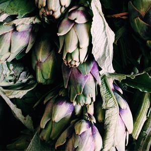 Пищевая плёнка: 41 красивый Instagram седой. Изображение № 8.