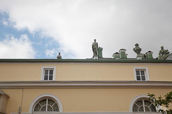 Фоторепортаж: Висячий сад Эрмитажа после реставрации. Изображение № 14.