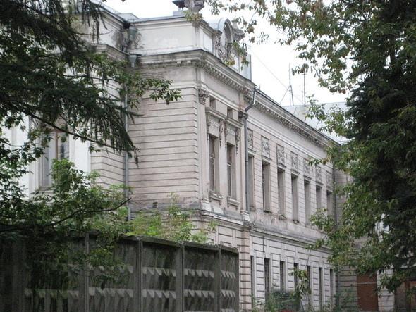 Около Пушкинского музея вырубают старинный парк. Изображение № 9.