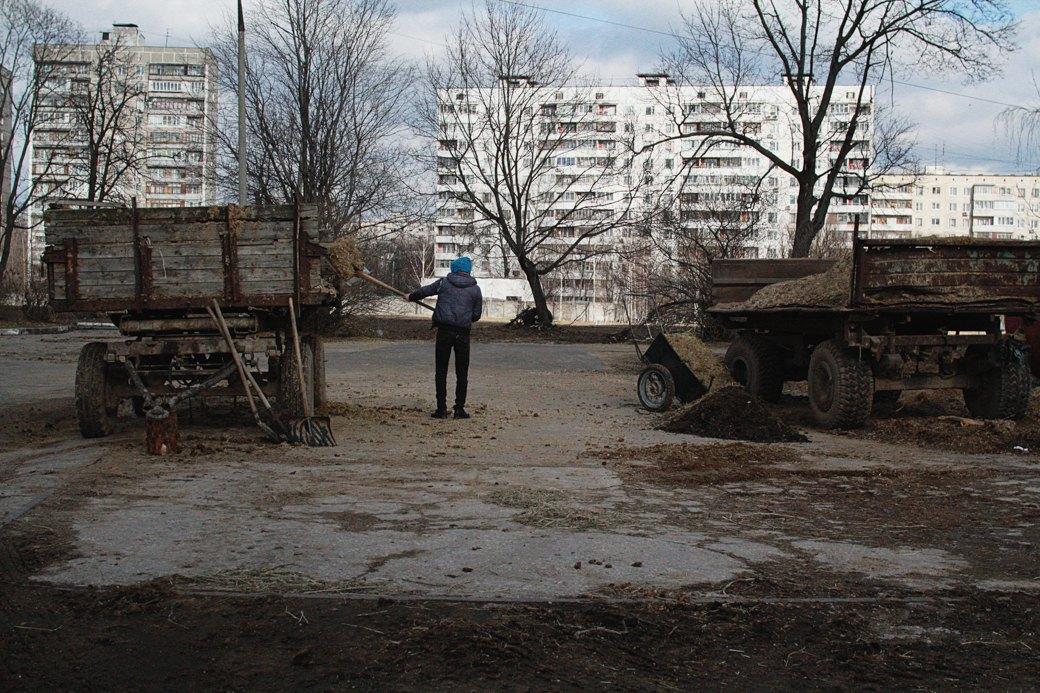 Почему отбирают земли уТимирязевской академии. Изображение № 14.