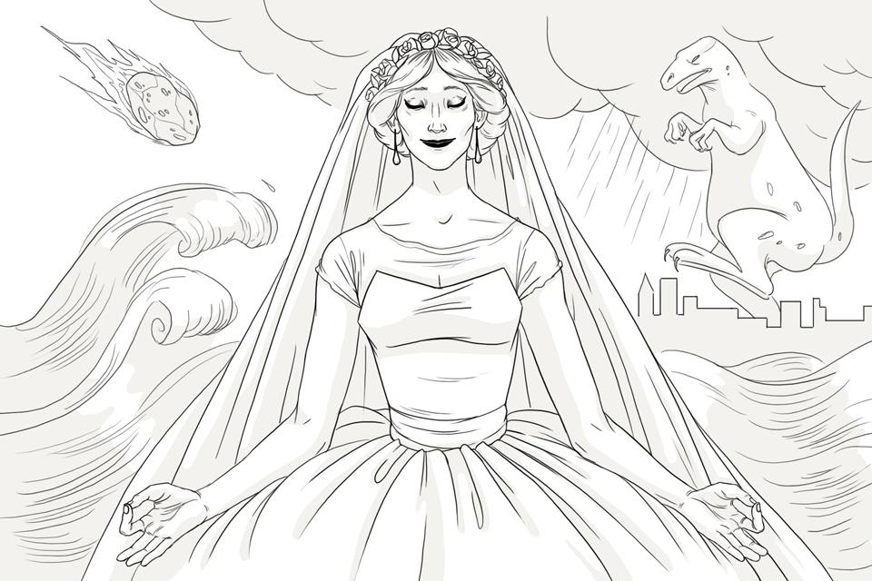 Организатор свадеб. Изображение № 1.