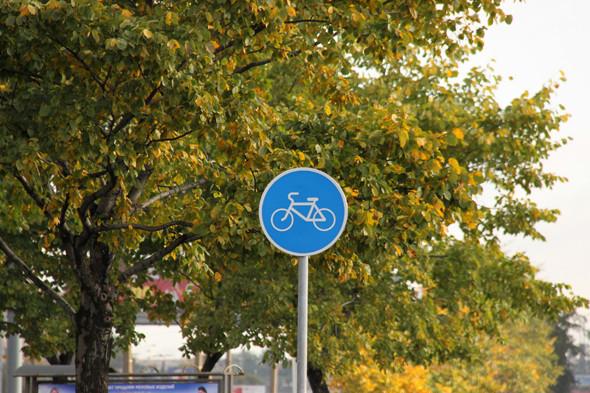 Длина велодорожек во Фрунзенском районе – 12 км. Изображение № 40.