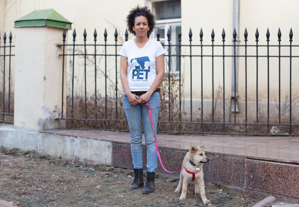 Твоё собачье дело: Как голландка трудоустраивает московских дворняг. Изображение № 2.