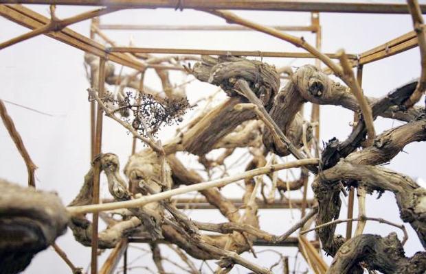 Гид по Большому скульптурному салону — 2012  . Зображення № 16.