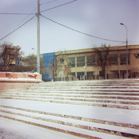 В зоне риска: Стадион «Динамо». Изображение № 32.