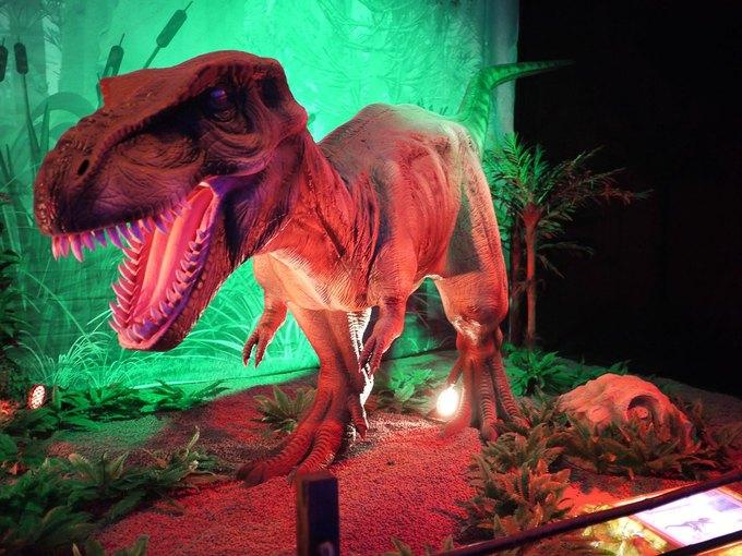 НаВДНХ появится «Город динозавров». Изображение № 5.