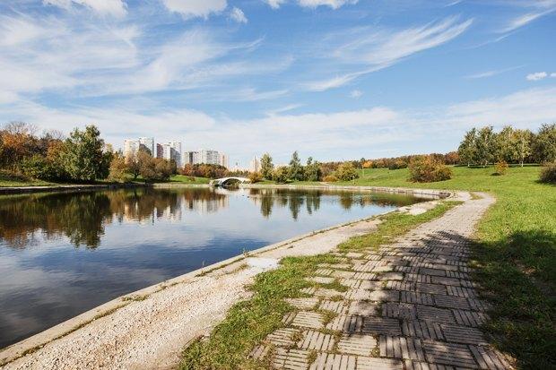 Чего хочет Москва: Четыре районных парка. Изображение № 31.