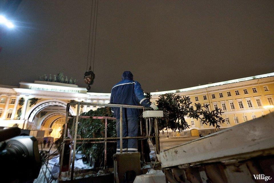 Фоторепортаж: Как устанавливали главную петербургскую ёлку. Изображение № 19.