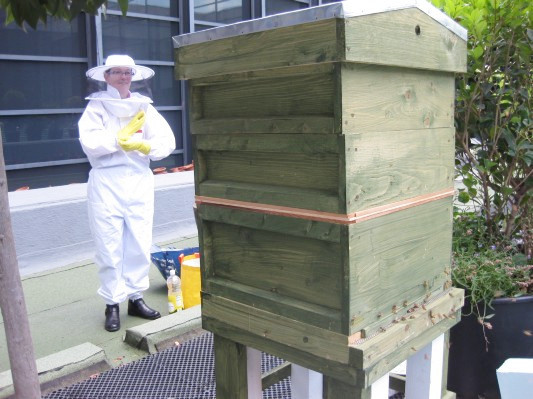 Как у них: «Городские пчёлы» в Лондоне. Изображение № 21.