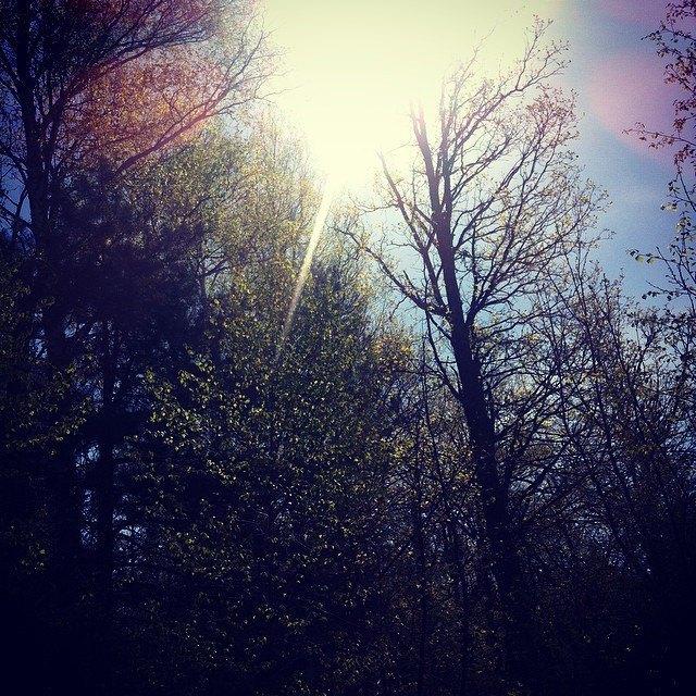 Открытие дачного сезона вснимках Instagram. Изображение № 1.