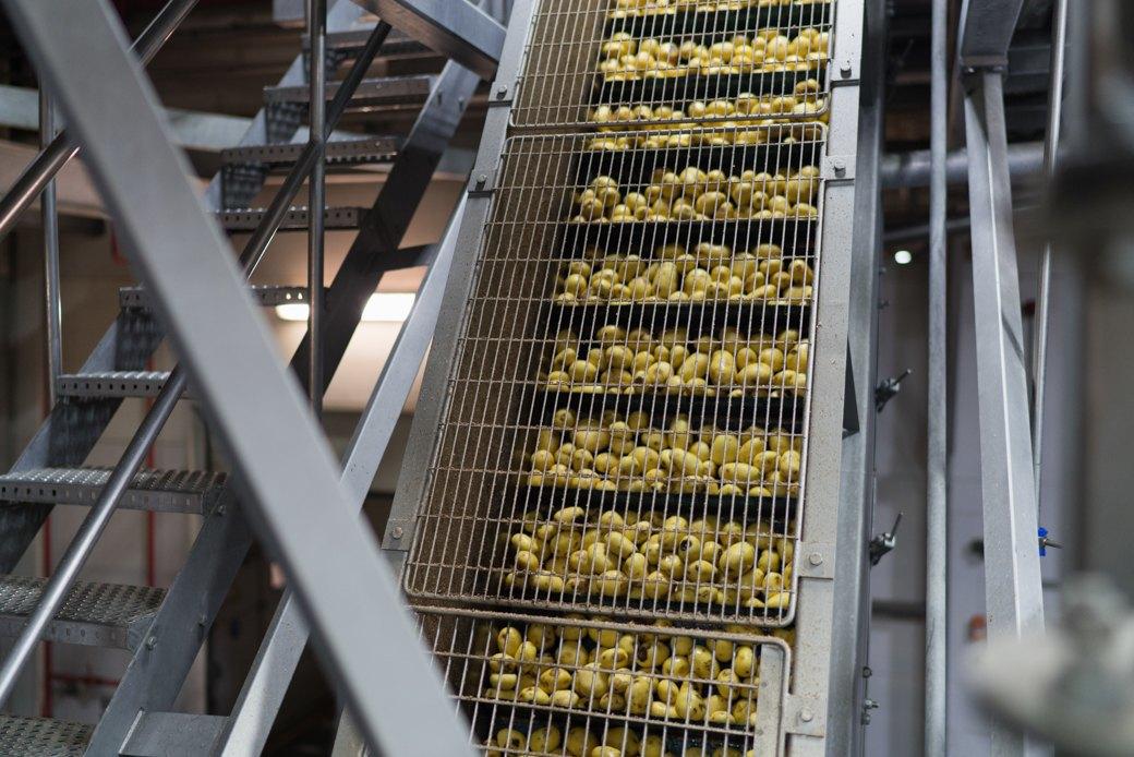 Как делают чипсы. Изображение № 6.