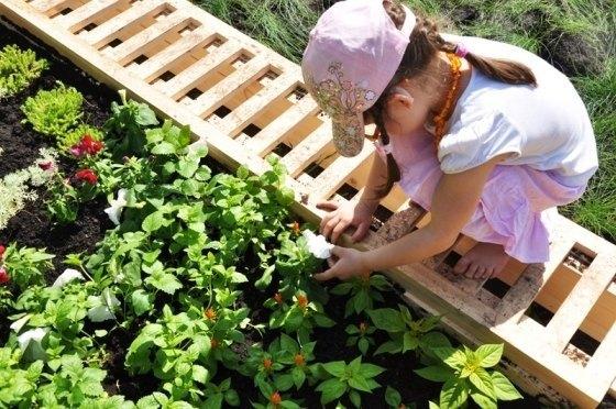 Активисты собирают деньги на создание сенсорного сада в «Сокольниках». Изображение № 1.