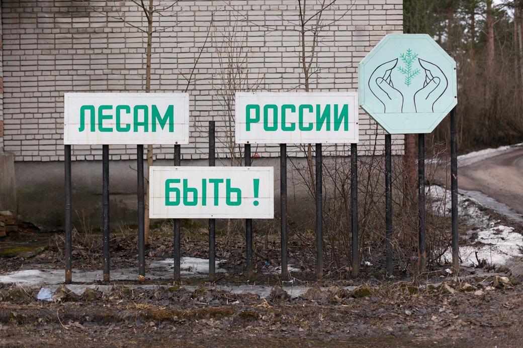 Рядом с лесничеством в посёлке Лесогорском (объединён со Светогорском с 2009 года). Изображение № 2.