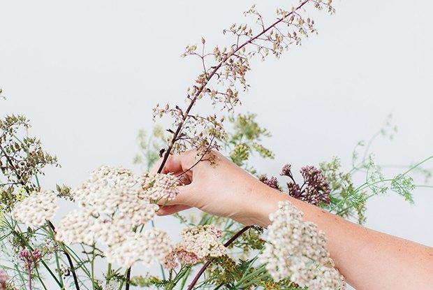 Раз ромашка, два ромашка: Из каких цветов и растений делать букеты на даче. Изображение № 2.