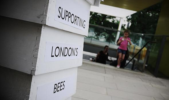 Как у них: «Городские пчёлы» в Лондоне. Изображение № 27.