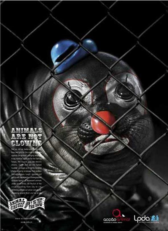 Социальная реклама португальского агенства Partners Lisboa: «Животные не клоуны», «Животный цирк: не будьте частью шоу». Изображение №5.