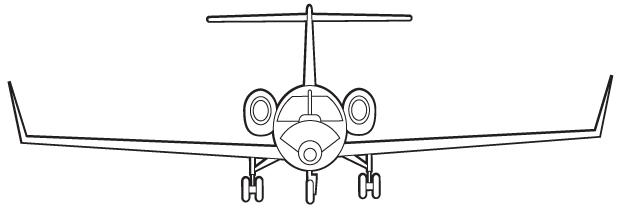 Дмитрий Кузнецов (SkyJet): Как правильно работать с VIP-пассажирами. Изображение № 1.