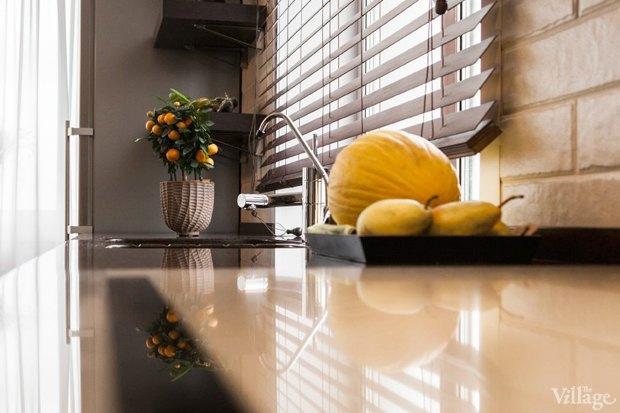Как преобразить квартиру с помощью домашнихрастений. Изображение № 9.