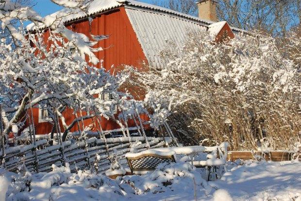 10мест в Стокгольме, куда ходят сами стокгольмцы . Изображение № 29.