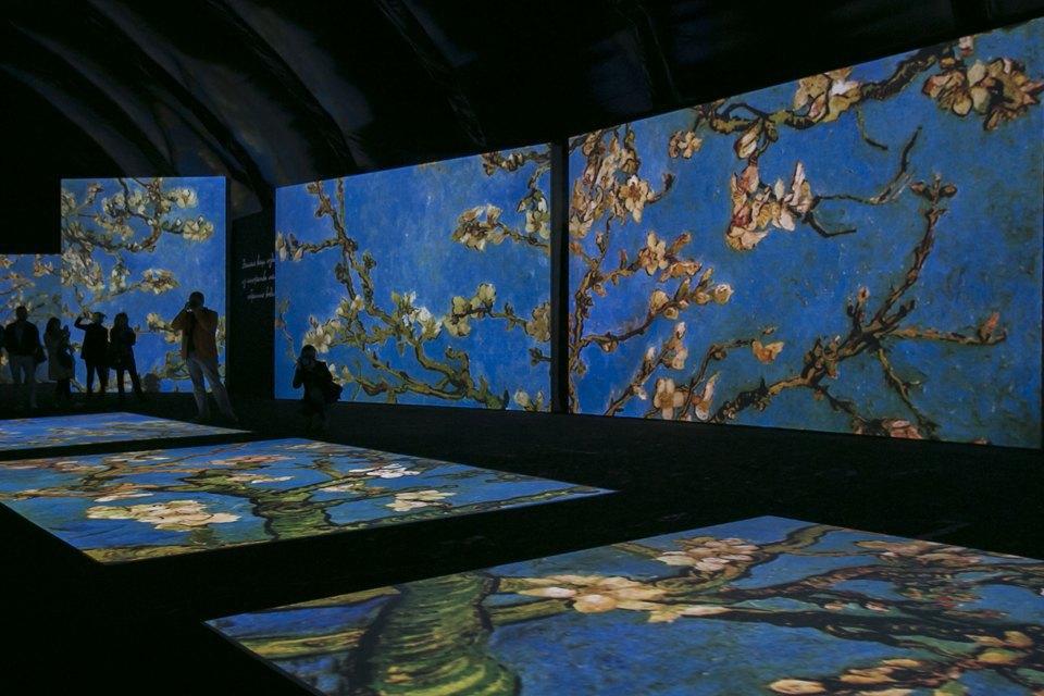 Выставка Van Gogh Alive . Изображение № 6.