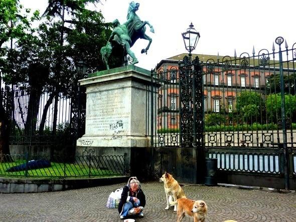 неаполитанка кормит собак. Изображение № 3.