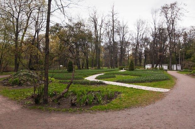 Директор ЦПКиО: «Елагин не станет парком Горького». Изображение № 2.