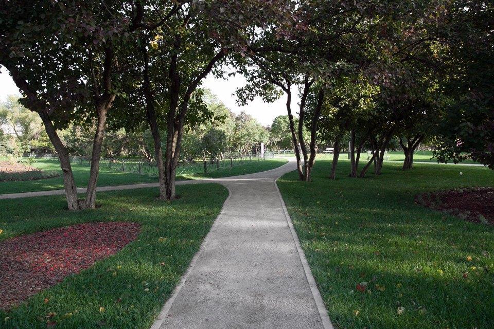 Обновлённый Сиреневый сад наЩёлковском шоссе. Изображение № 17.