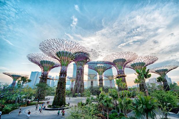 Идеи для города: Механический лес вСингапуре. Изображение № 13.