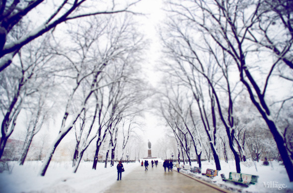 Белым по серому: Итоги снежного января в Киеве. Зображення № 17.