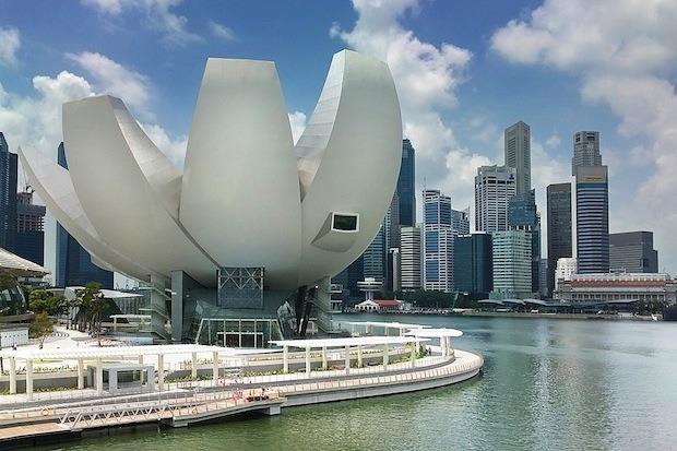 Дизайн от природы: Дом-лотос и супердеревья в Сингапуре. Изображение № 16.