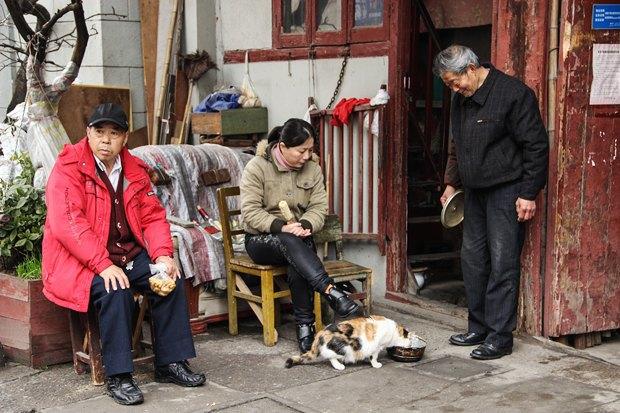 Часть целого: Старый город вШанхае. Изображение № 15.