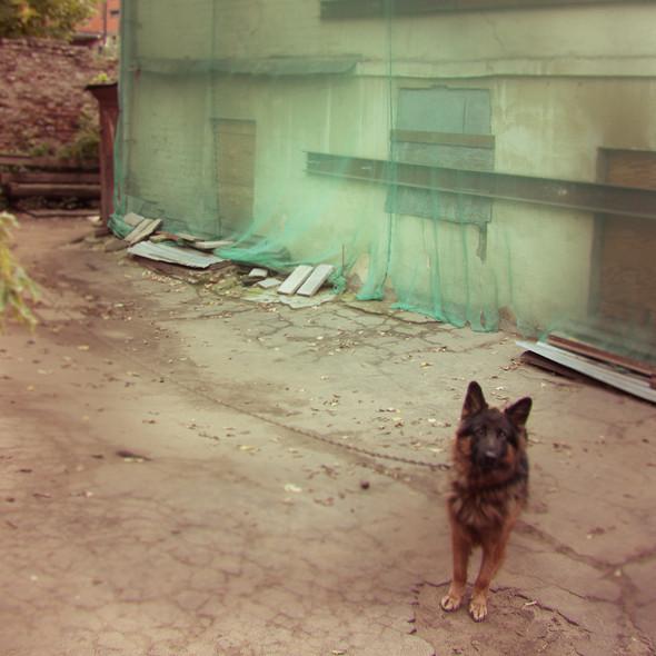 В зоне риска: Доходный дом в Пожарском переулке. Изображение № 3.